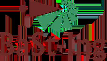 logo_bast_ing_a